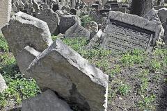 jewish-cintorin